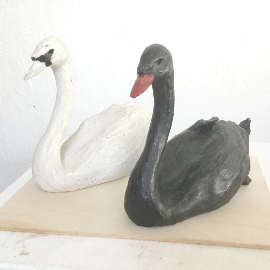 Swan pair in Black & white